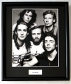 GENESIS, FRAMED PHOTO (1)